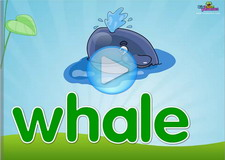 Wh digraph Phonics Video