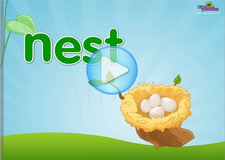 N beginning Phonics Video