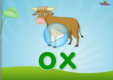 Short o Phonics Video