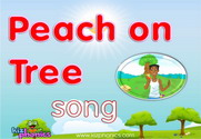 Peach on Tree Song