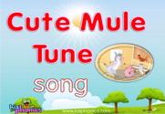 Cute Mule Song