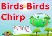 Birds Chirp Song