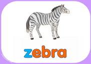 Zz Word Cards